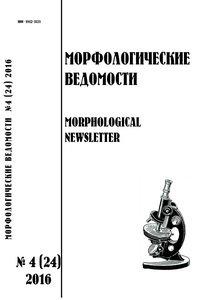 morfologicheskie-vedomosti